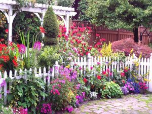 Learn to color your garden