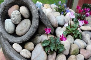 How to design a rockery garden