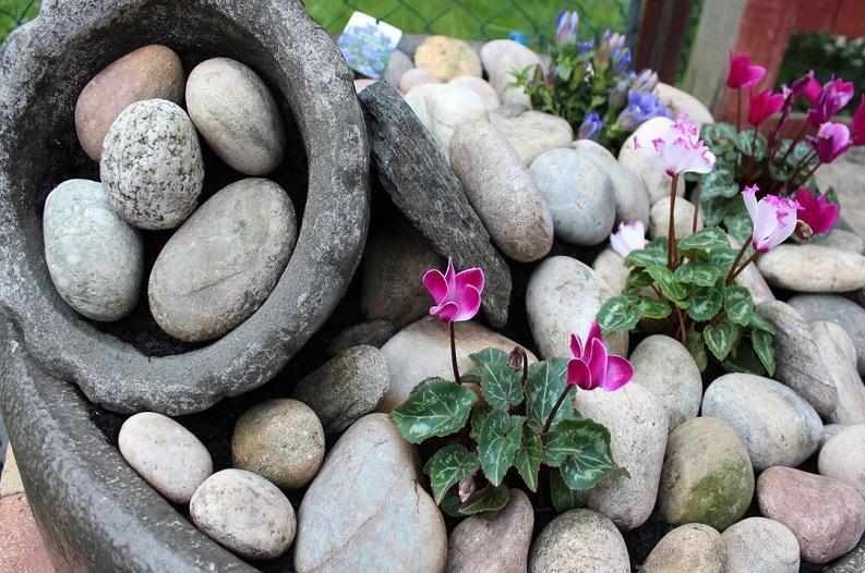 design a rockery garden