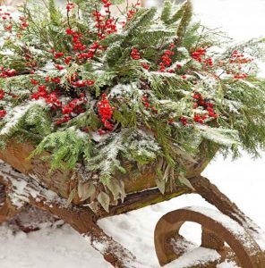 6 ideas to decorate a garden in winter