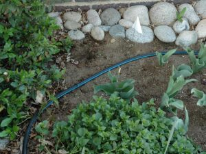How to make a homemade drip irrigation system