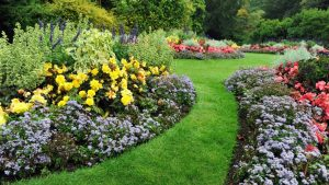 How to make your garden into a work of art