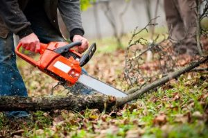 What you need to know when using a chainsaw
