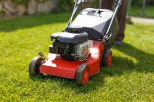Reasons to Buy a Top of the Range Lawn Mower