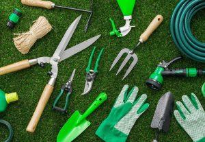 Garden scissors: types and uses